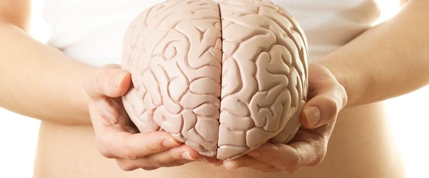Mózg też ma swój mikrobiom