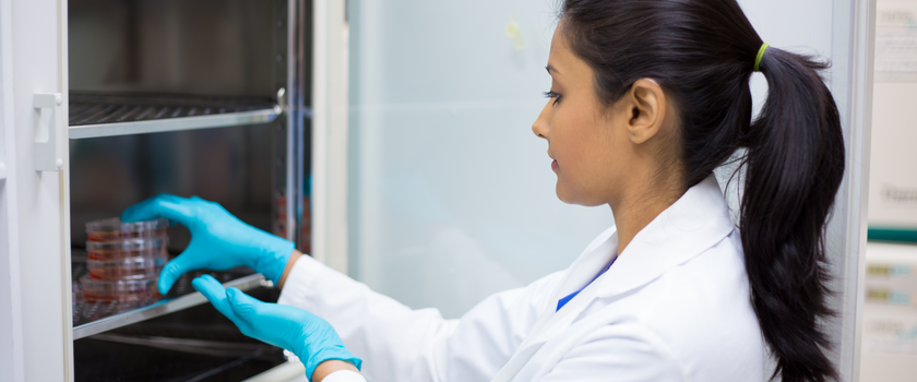 Pierwsze czytanie 5 projektów ustawy o in vitro już dziś