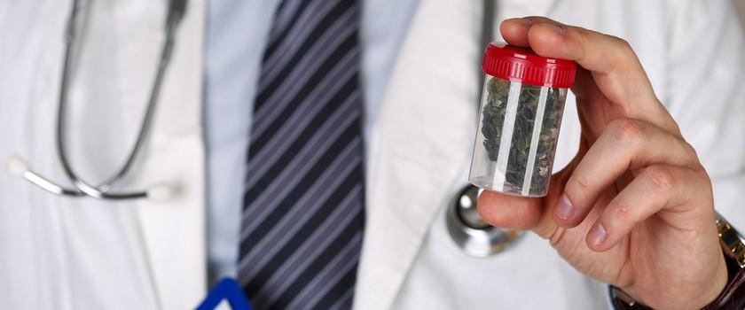 Czy terapia marihuaną powróci do Centrum Zdrowia Dziecka?