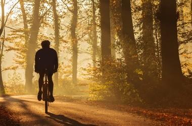 Rower w okresie jesiennym