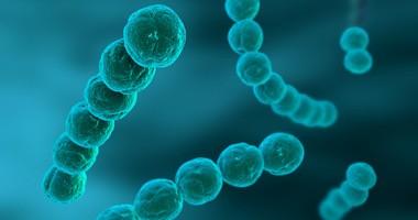 Antybiotykooporne bakterie mogą przyspieszać gojenie się ran