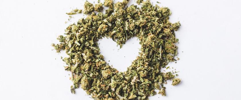 Czy marihuana może chronić przed chorobami serca?