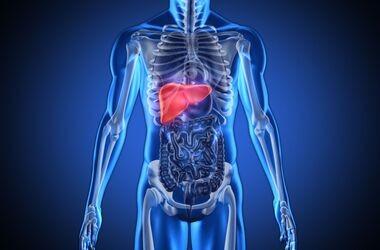 Choroby wątroby – objawy, rodzaje i leczenie