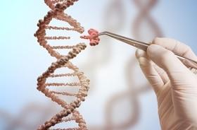 Kariotyp – czym jest badanie? Czy analiza chromosomów pomaga znaleźć przyczynę poronień i wykryć wadę genetyczną?
