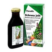 Floradix Ochrona Jelit, płyn, 250 ml