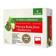 Morwa Biała forte + Berberyna, tabletki, 60 szt.