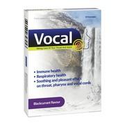 Vocal czarna porzeczka, pastylki do ssania, twarde, 24 szt.