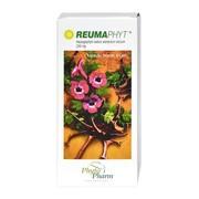 Reumaphyt, 250 mg, kapsułki twarde, 65 szt.