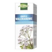 Krople walerianowe, 35 g (Herbapol Lublin)