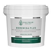 Sulphur Zdrój, borowina Plus, 1000 g