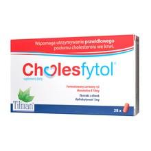Cholesfytol, tabletki powlekane, 28 szt.