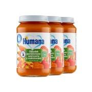 Zestaw 3x Humana 100% Organic, obiadek pomidorowo-warzywny z makaronem, bez dodatku soli, 190 g