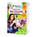 Herbatka Dla trzustki, fix, 2 g, 20 szt. (Herbapol Kraków)