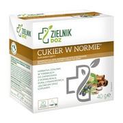 ZIELNIK DOZ Cukier w normie, herbatka ziołowa, 2 g, saszetki, 20 szt.