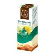Gastrobonisol, płyn doustny, 100 g