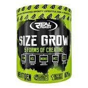 Real pharm size grow, smak pomarańczowy, proszek, 675 g