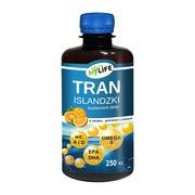 Tran islandzki o smaku pomarańczowym, olej, 250 ml
