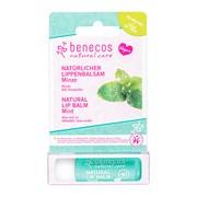 Benecos Natural Lip, balsam do ust, Mięta, 4,8 g