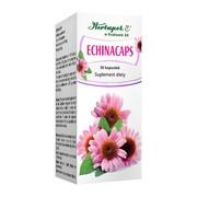 Echinacaps, kapsułki., 30 szt.