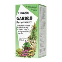 Floradix Gardło, syrop ziołowy, 100 ml