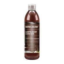 Barwa Ziołowa, szampon Czarna Rzepa do włosów osłabionych, 250 ml