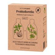 EKO Probiotyczne ekstrakty roślinne Zioła Jędrzeja ProbioBorelio, płyn, 2 x 300 ml
