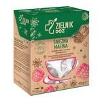 ZIELNIK DOZ Śnieżna Malina, herbatka ziołowo-owocowa, 2 g, 20 szt.