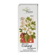 Intractum Crataegi Phytopharm, płyn doustny, 100 ml