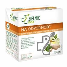 ZIELNIK DOZ Herbatka na odporność, 2 g, 20 szt.