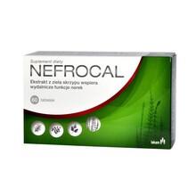 Nefrocal, tabletki, 60 szt.