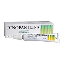 Rinopanteina, maść do nosa, 10 g