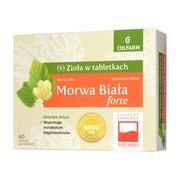 Morwa Biała Forte, tabletki powlekane, 60 szt.